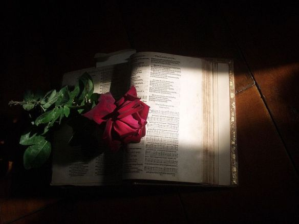 800px-Psalter-with-rose